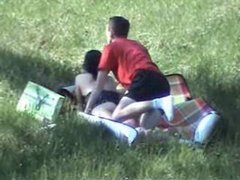 Non-professional Sex in Public Woodland