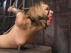 S&m photograph in golden-haired Jolene getting glutton fastened and toyed