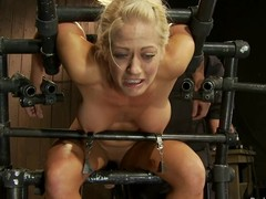 Curvaceous Holly Heart receives her nipps tormented